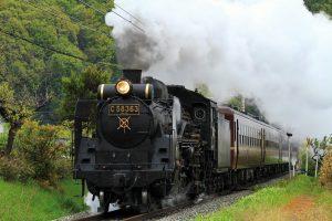 SL Paleo Express
